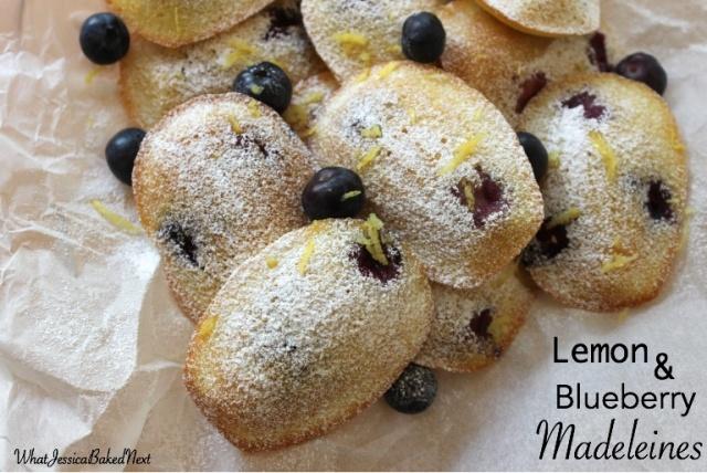lemon blueberry madeleines