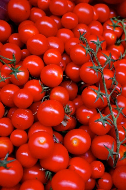 florence pomodoro